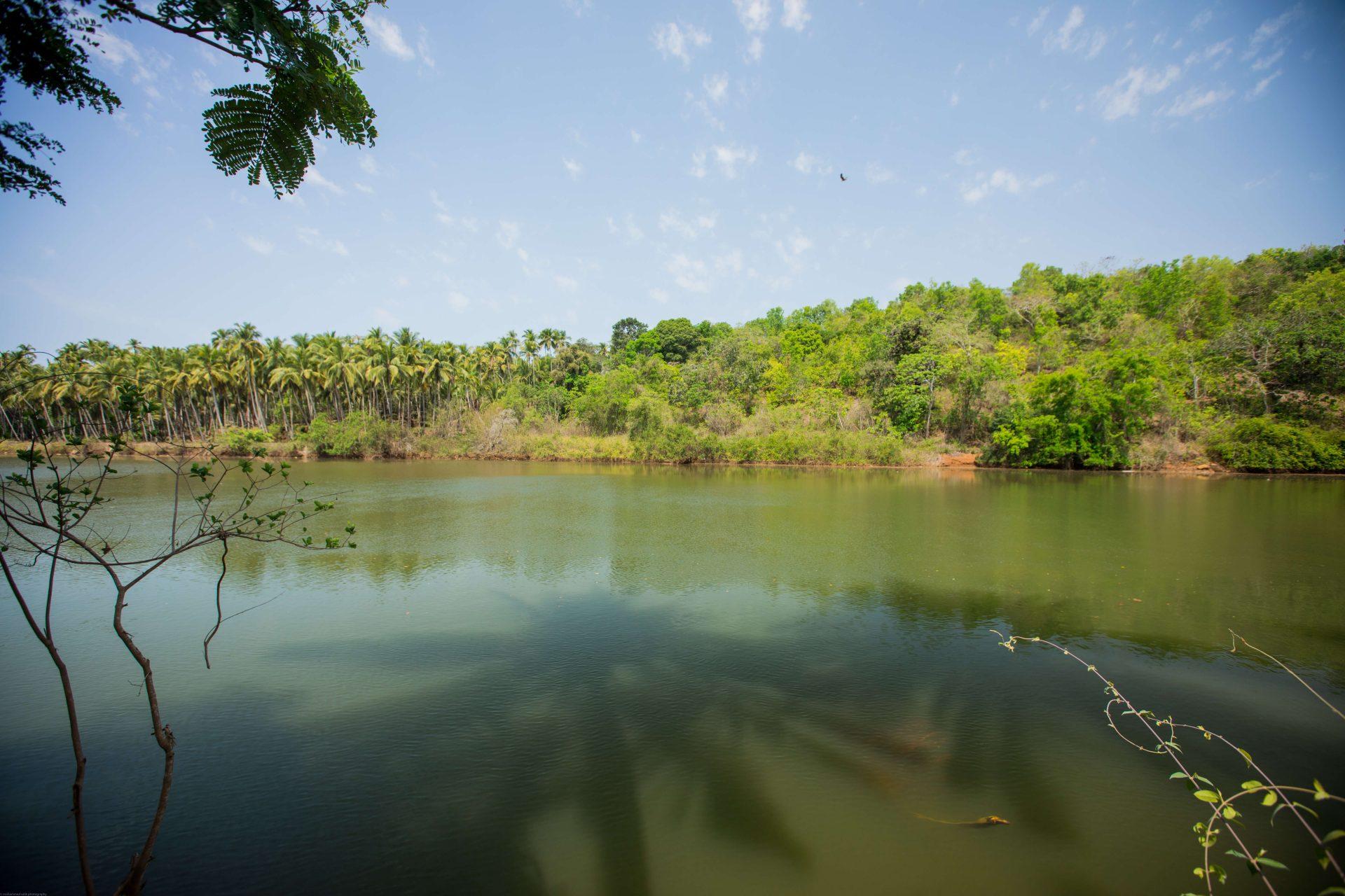 bamboo-yoga-river2